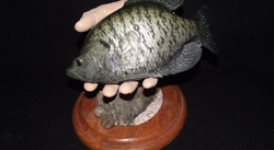 close up head of fiberglass replica blue gill