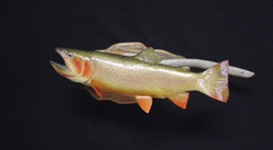 Brook Trout fiberglass fish replica